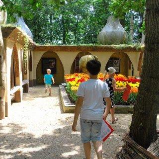 Der Märchenwald von Land van Fluwel