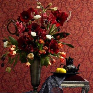 Tulpen und Amaryllis
