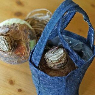 Amaryllis-Pflanzbeutel aus Jeans