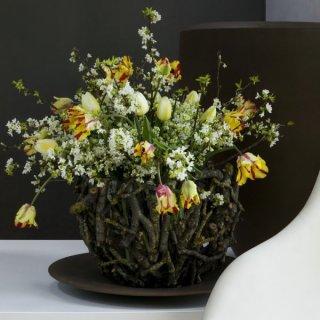 Tulpen und Zweige