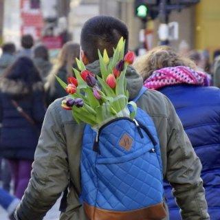 Ein Rucksack voller Blumen ...