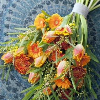Gerbera und Gefranste Tulpen