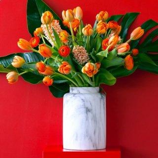 Gefüllte Tulpen, Hyazinthen und Ranunkeln ...