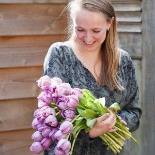 Ein Strauß Tulpen zum Valentinstag