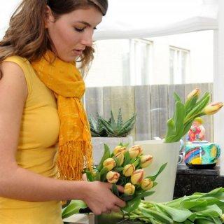 Tulpenstrauß arrangieren