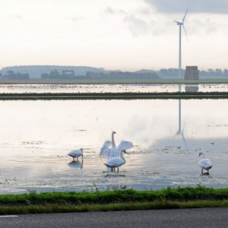 Inundation in Nordholland